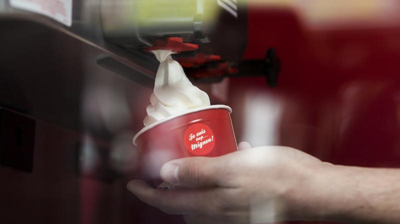 pot yaourt glacé